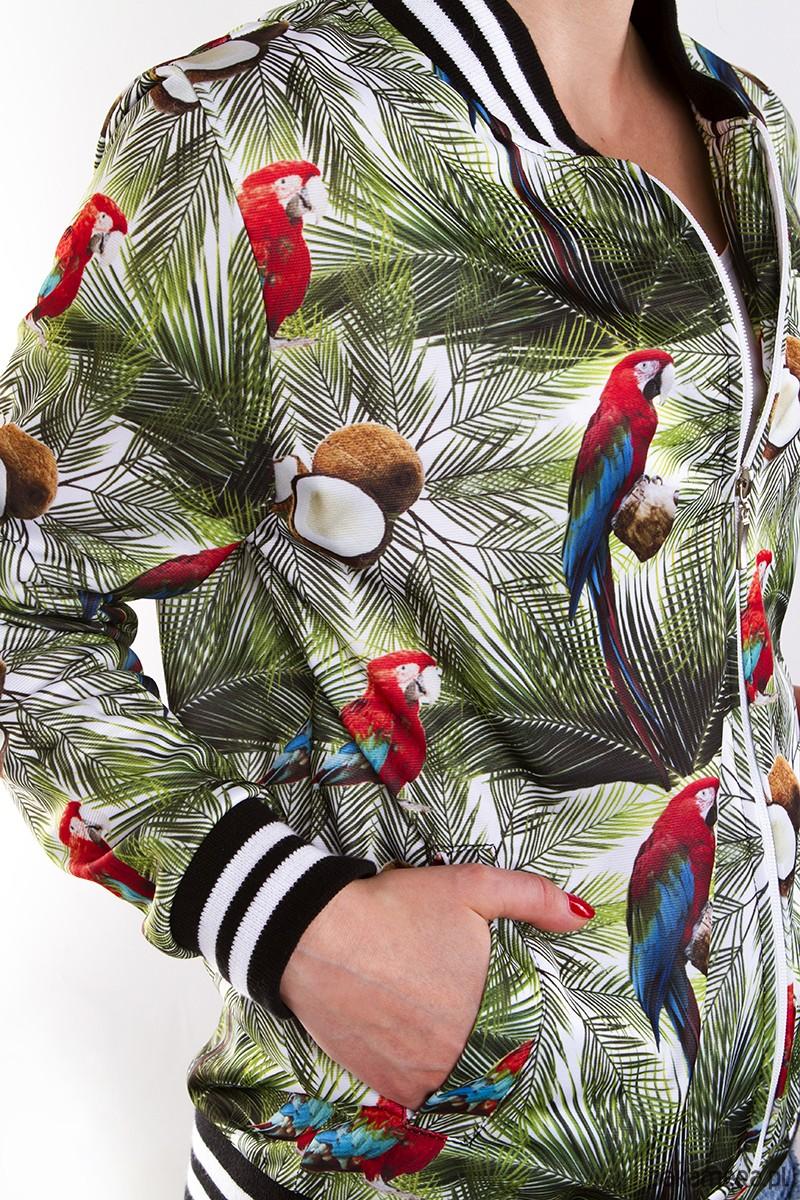adidas bluza papugi