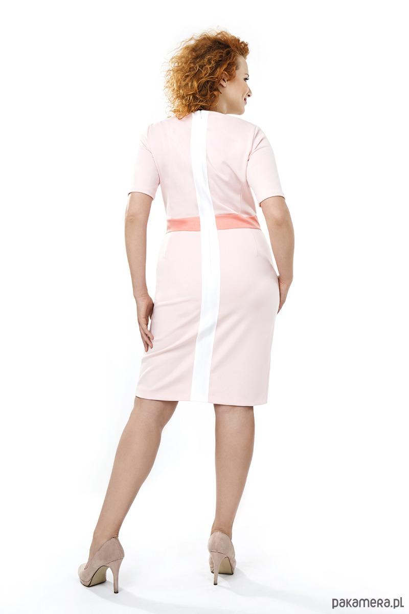 a4de46b625 Sukienka Biznesowa SIZE+40 WIOSNA LATO Darksus - sukienki - midi ...
