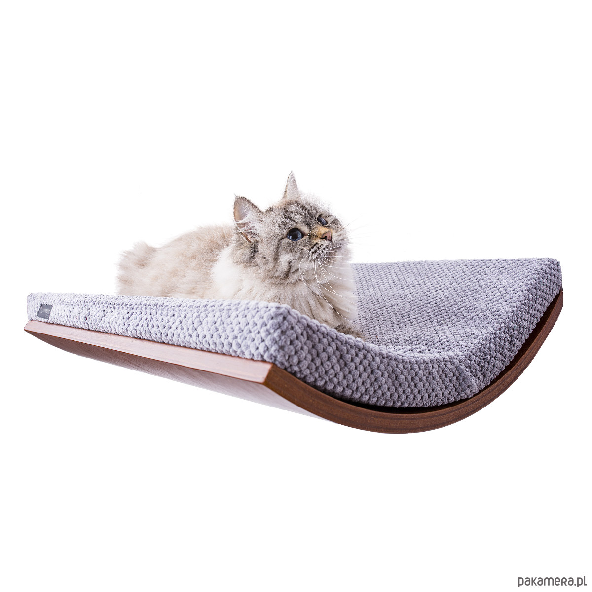 meble dla kot243w legowisko dla kota p243�ka kot dla