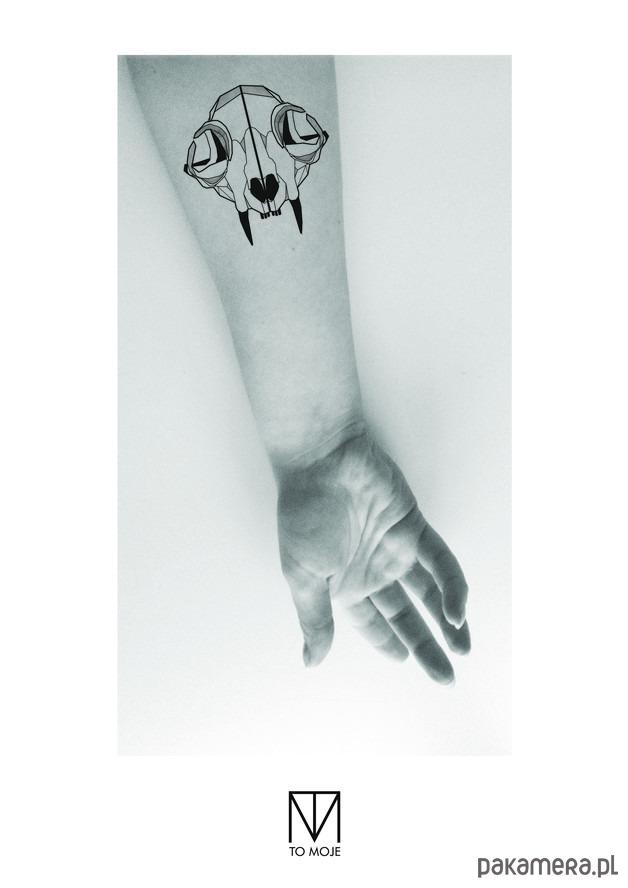 Tatuaż Czaszka Kota Tatuaże Pakamerapl